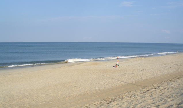beach scene in Southern Shores, NC (Outer Banks)